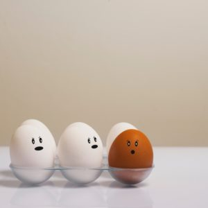 卵の白玉と赤玉は栄養価が違う⁈ヨード卵・有精卵・無精卵の選び方